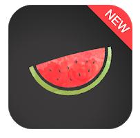 VPN Melon for PC