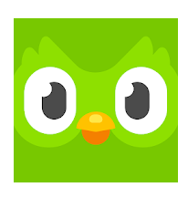 1 Duolingo