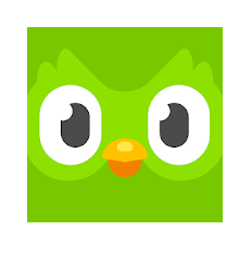 6 Duolingo