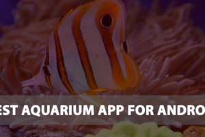 best-aquarium-app-for-android
