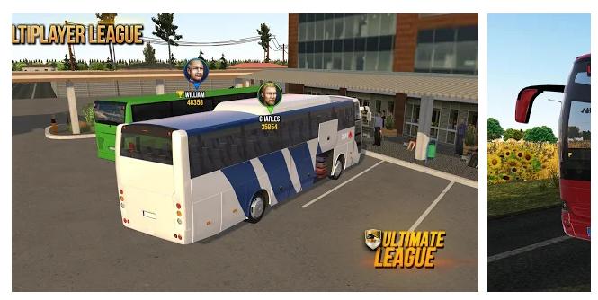 7 Bus Simulator