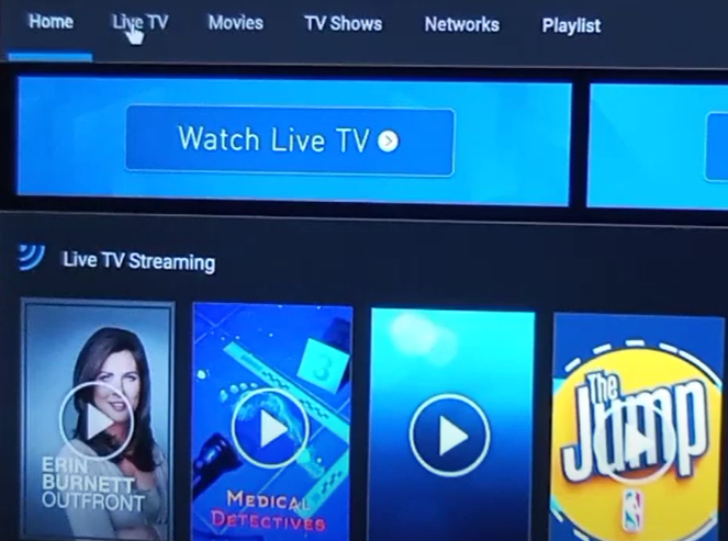 After downloading this application, select install to launch on your firestick device