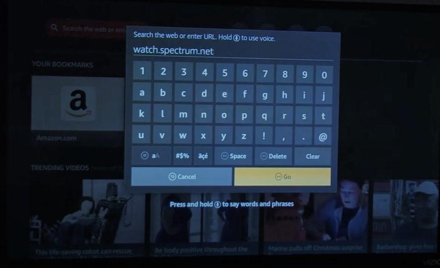 Now type watch spectrum.net Then hit the Go button.
